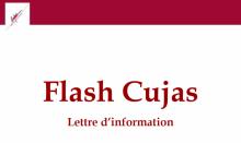 Vignette Flash Cujas